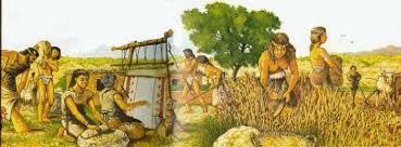 L'Agricultura