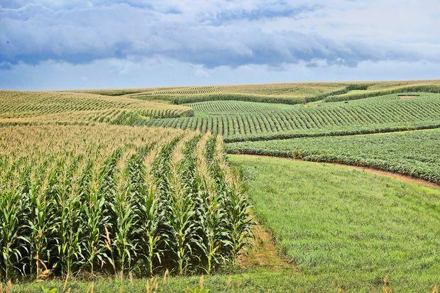 Nutrient Management Plans for Farms