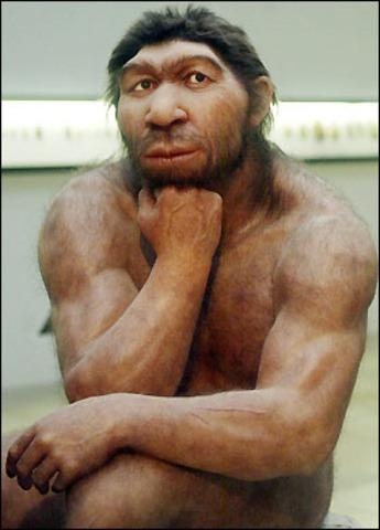 Homo sapiens neaderthalensis