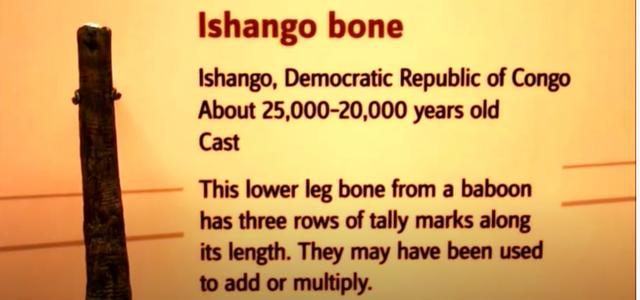 un hueso descubierto de áfrica