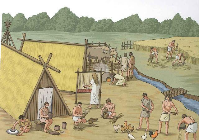 Divisió i especialització del treball del neolític
