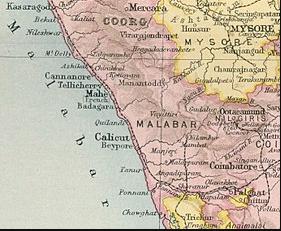 Primeros granos en Malabar(india)