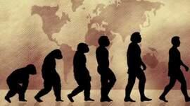 DEL PRIMAT A L'HOMÍNID. L'ORIGEN DE LA HUMANITAT timeline