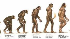 De primats a homínids timeline