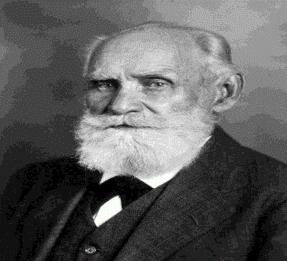 Ivan Pavlov - Período clásico