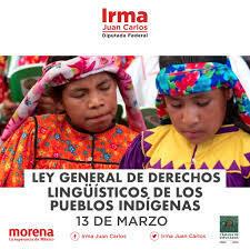 Ley General de Derechos Lingüísticos de los Pueblos Indígenas (LGDLPI)