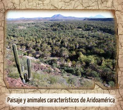 Aridoamérica - Contexto.