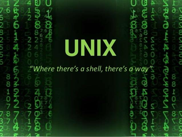 Se publica manual Unix