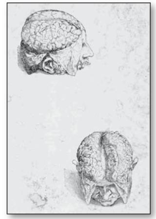 Andres Vesalio Bélgica Siglo XVI