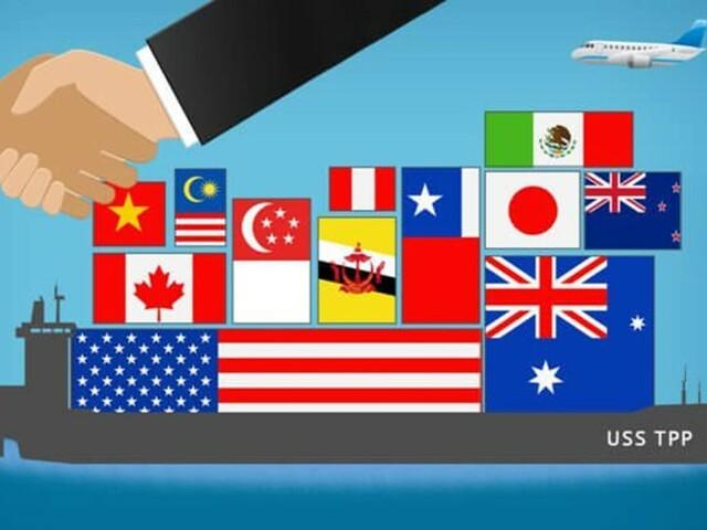 Se recuperó la actividad económica por la vía primaria-exportadora