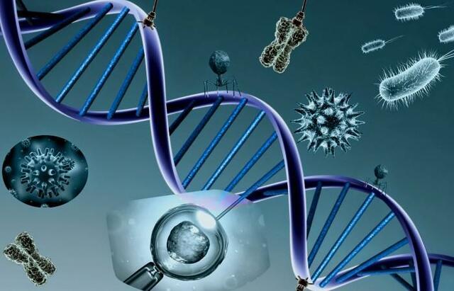 Bioquímica, microbiología y biología molecular