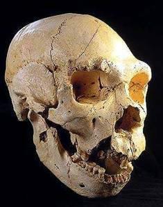 Homo Antecessor, l'homínid Europeu