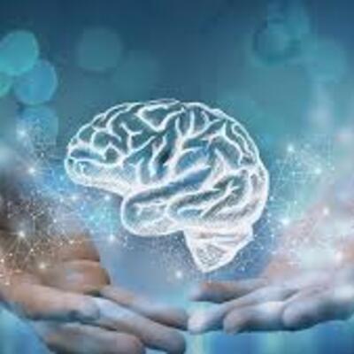 Evolución de la neurociencia de la conducta timeline