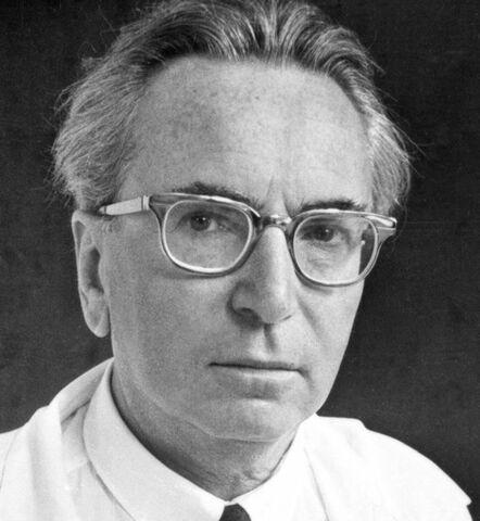 Viktor Frankl, Cuerpo, Psique, Espiritu