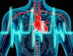 Era Electrofisiología