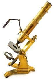 ¡llego el microscopio !