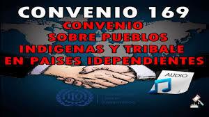 El Convenio 169 de la OIT (Organización Internacional del Trabajo)