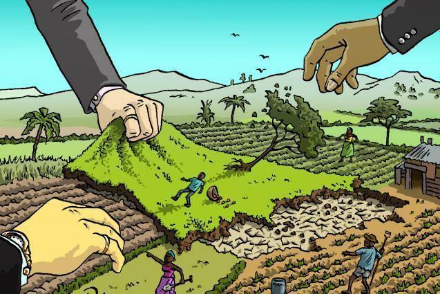 Repartición de tierras