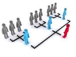 Principios de la coordinación