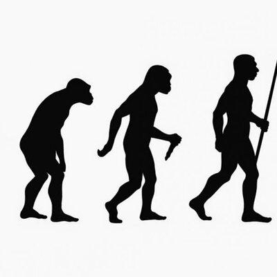 Del primat a l'hominid timeline