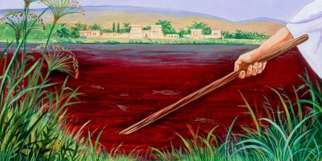 Sangre en el rio