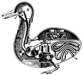 El pato con aparato digestivo