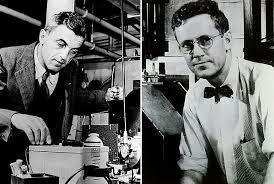 Felix Bloch y Edward Purcell
