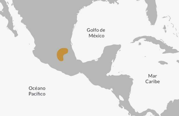 Ubicación Tolteca