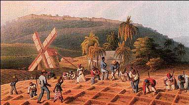 Agricultura, productos agropecuarios y manufactura.