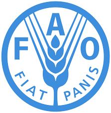 Se constituye la FAO – Food and Agricultural Organization-
