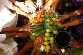 Iniciativa de la seguridad alimentaria nutricional (SAN)
