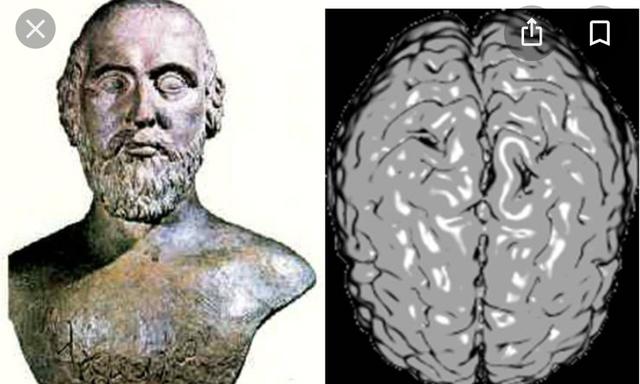 Alcmeón de Crotona (500,450) A,C