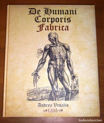 1543 - Vesalio