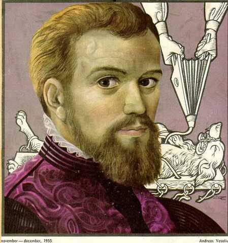1555 - Andreas Vesalius