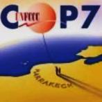 COP 7: Resultados - Protocolo de Kioto y MDL