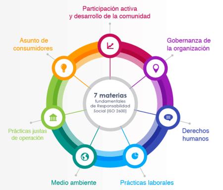 Responsabilidad social empresarial y sus 7 principios.