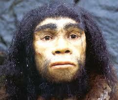 Homo heldelbergensis