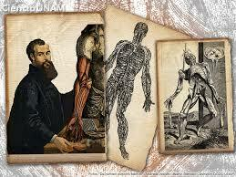 Andreas Vesalio 1514-1564