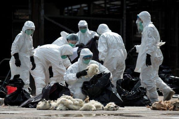 La Gripe de Hong Kong