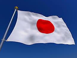Sociedad Ergonomica Japonesa