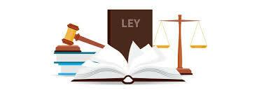 Ley 590