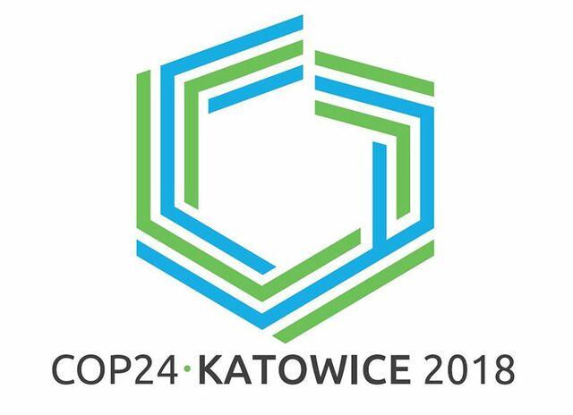 COP 24: Resultados - mecanismos de cooperación y diagnóstico global