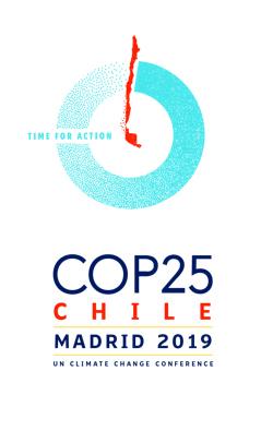 COP 25: ¿Por qué Blue COP?