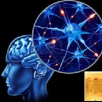 Surge la Psicología  Científica