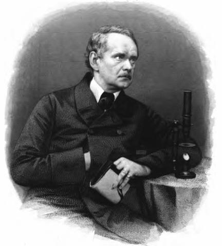 Matthias Scheleiden