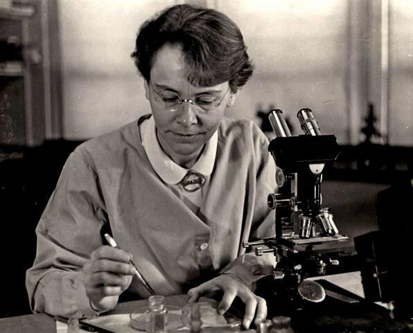 Barbara McClintock propone la existencia de los transposones.