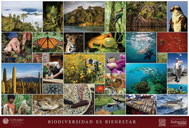 Biodiversidad.