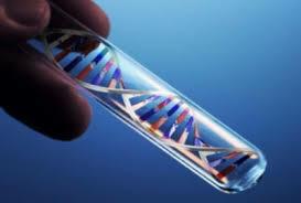 nueva ola de experimentos dedicados a conocer su estructura real.