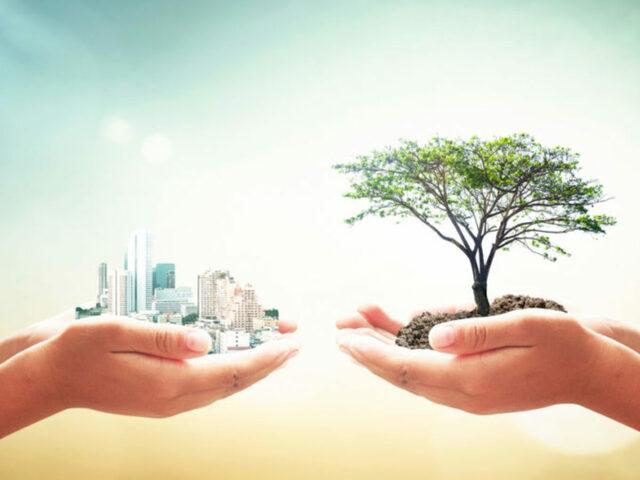 Origen de la sustentabilidad.