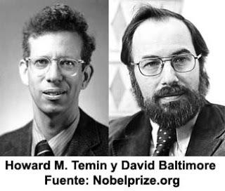 Temin y David Baltimore denominan transcriptasa inversa o «retrotranscriptasa»